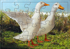 145image_small_puzzle6s